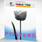 posters1-500x480